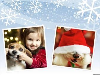 collage photos pour modifier et decorer vos photos avec un design