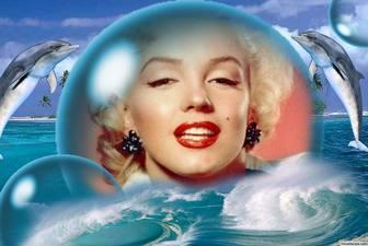 Les dauphins et une grosse bulle pour mettre votre photo pour
