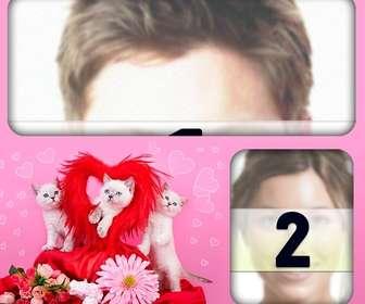 photomontages romantique avec les chatons et les coeurs avec un fond rose pour placer deux images lamour