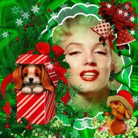 Photomontage de Noël avec une belle chiot comme un cadeau.