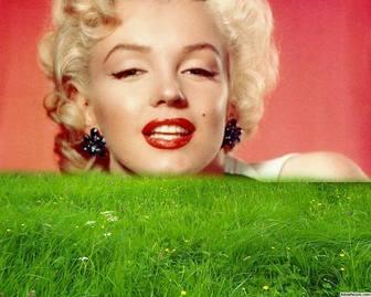 Cadre pour lherbe verte dans votre photo.