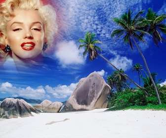Photomontage pour faire un collage avec votre photo et le ciel de cette île paradisiaque. Voir palmiers derrière des rochers de la plage, une mer turquoise et le ciel bleu avec des taches de nuages blancs.