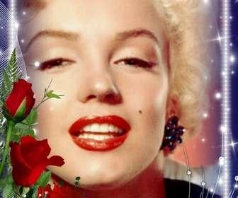 """Cadre photo avec des bords lumineux orné d""""un bouquet de roses."""