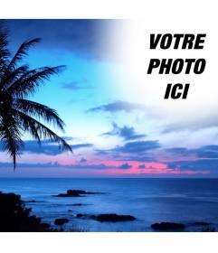 Collage de photos pour des photos dun coucher de soleil pour mettre votre photo, avec un ciel bleu dans un paysage de littoral idyllique, où lon voit un grand palmier.