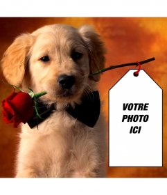 Photomontage avec un chiot de mettre votre photo sur une carte détenue par le chiot