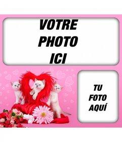 Photomontages romantique avec les chatons et les coeurs avec un fond rose pour placer deux images de lamour