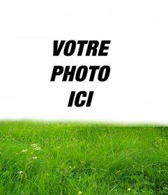 Cadre pour lherbe verte dans votre photo