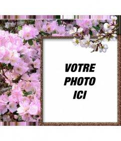 cadre photo pour les photos en ligne autour de votre photo de fleurs blanches photoeffets. Black Bedroom Furniture Sets. Home Design Ideas