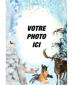 Photo Winter montage avec plusieurs animaux