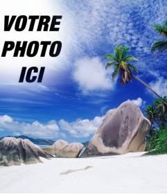 Photomontage pour faire un collage avec votre photo et le ciel de cette île paradisiaque. Voir palmiers derrière des rochers de la plage, une mer turquoise et le ciel bleu avec des taches de nuages blancs