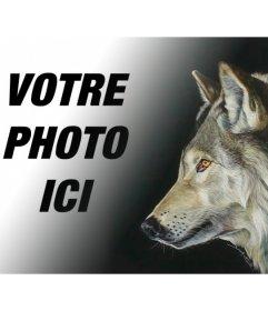 Photomontage avec une photo dun loup pour faire des collages avec vos propres images et expressions
