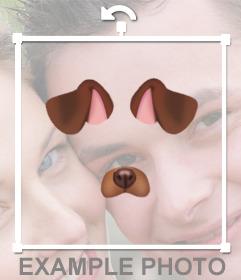 Collez les oreilles et le nez dun chiot dans votre photo gratuite