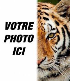Photomontage davoir la moitié de son visage comme un tigre