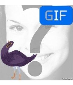 Trash Doves meme animation gif pour mettre votre photo dans