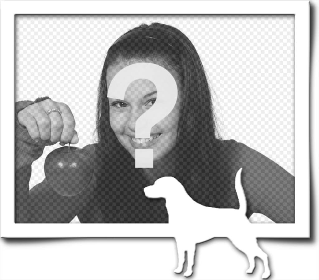 """Cadre photo numérique, qui consiste en une bordure grise et blanche silhouette d""""un chien avec sa queue levée, comme s""""il avait trouvé une piste"""