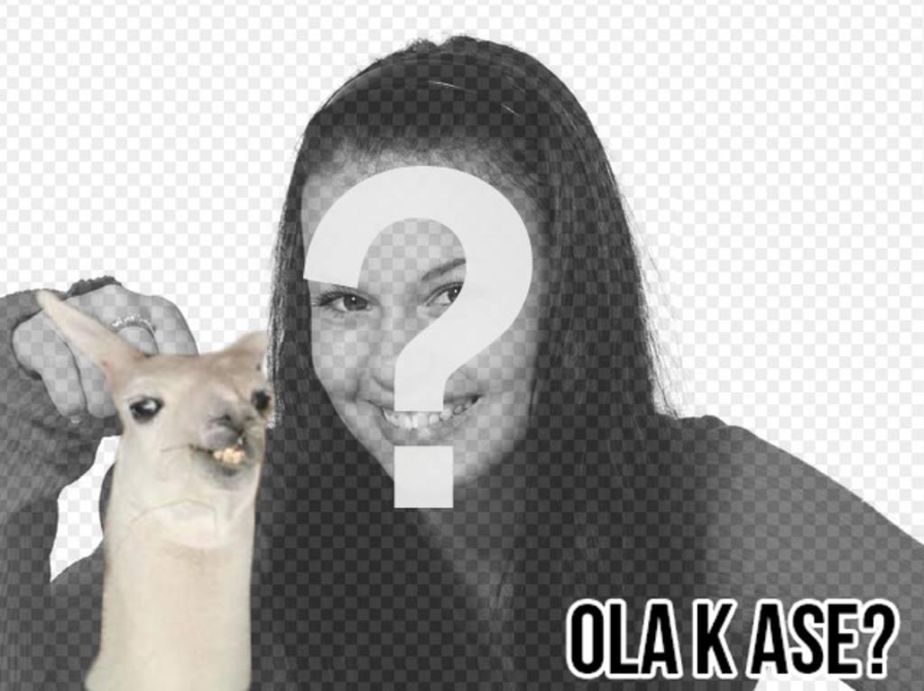 """Créer un photomontage facile avec meme flamme """"Ola ke ase?"""" et ajouter du texte gratuitement en ligne"""