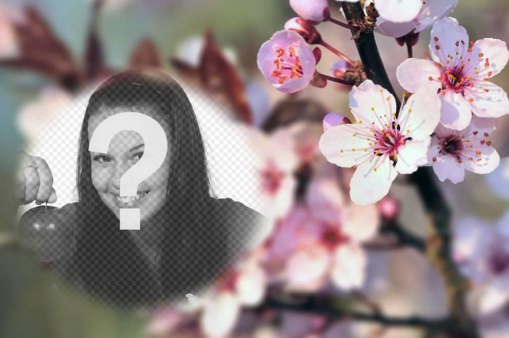 Photomontage sur un fond flou de fleurs de cerisier et un semi-PhotoFrame arrondi à placer votre photo