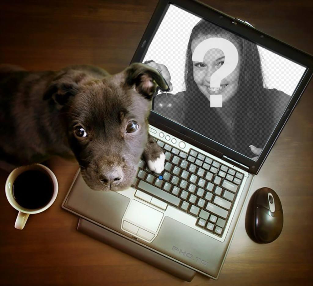 Collage avec un chiot jouant sur un ordinateur où vous pouvez mettre votre photo