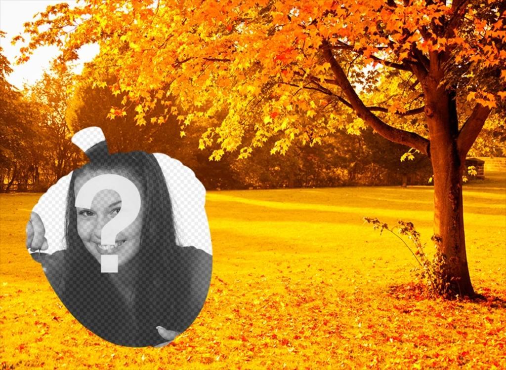 Cadre des arbres dautomne dor de photo en forme de gland