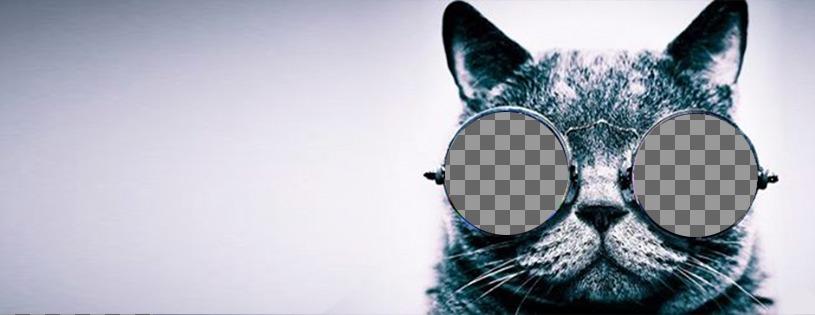 Personnalisable photo de couverture pour Facebook avec un chat avec des lunettes de soleil