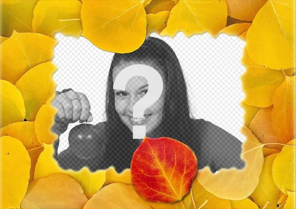 Photomontage dun cadre photo avec des feuilles sèches