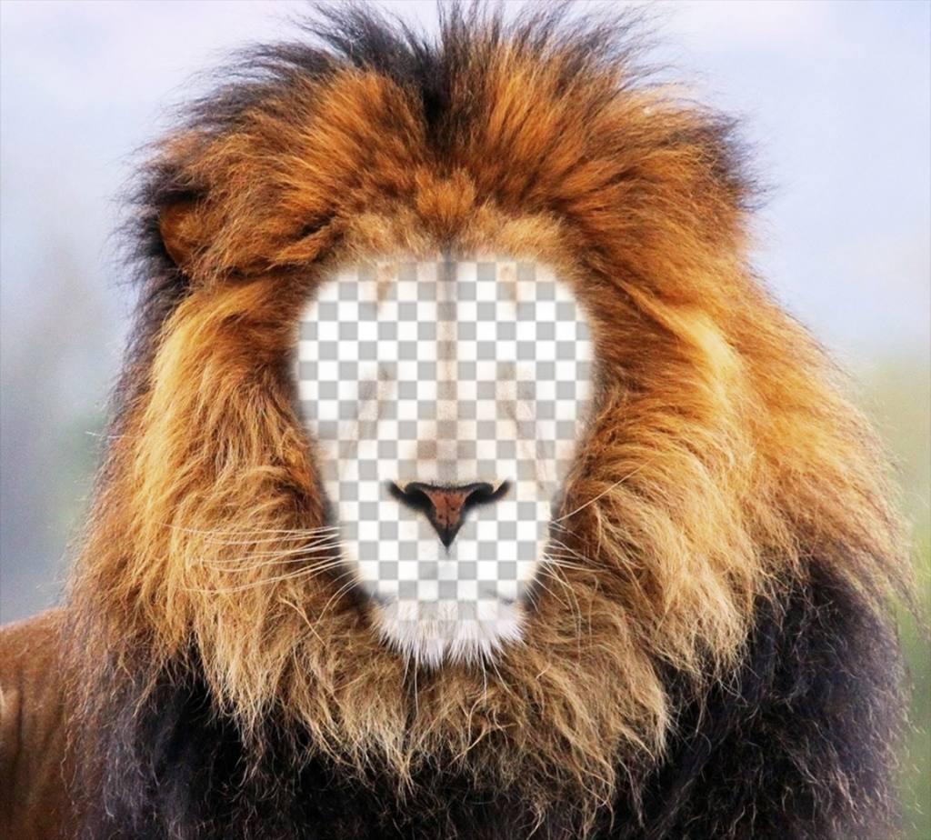 Photomontage dun lion pour mettre votre visage en ligne