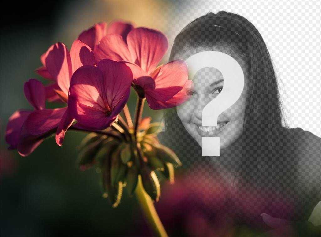 Gratuit effet photo à vos photos avec un filtre dune fleur