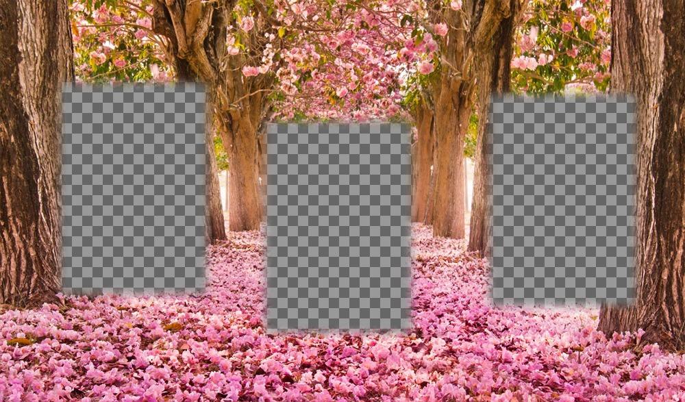 Collage gratuit pour éditer avec trois photos et les ajouter à un paysage fleuri