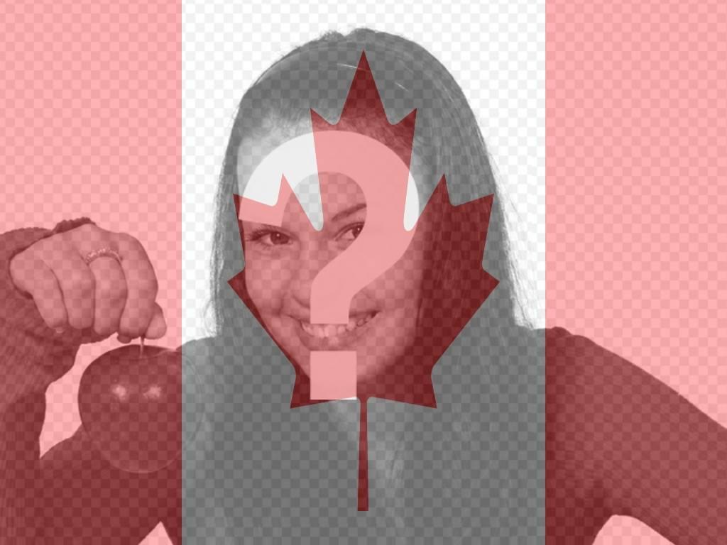 Photo montage de mettre le drapeau canadien sur votre photo de profil