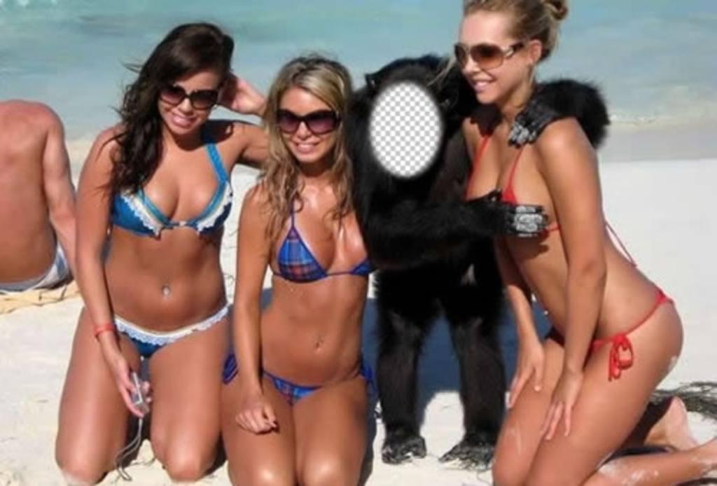 Créer ce photomontage dêtre un singe avec trois filles en maillot de bain