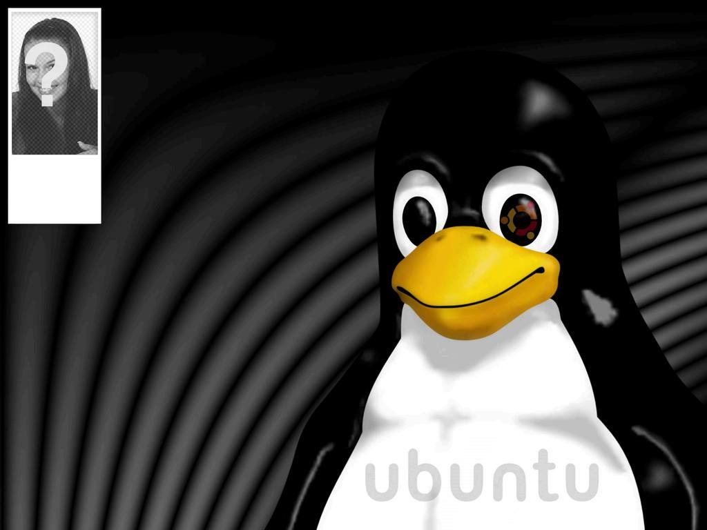 Contexte pour twitter de la mascotte de Linux Tux où vous pouvez mettre votre photo