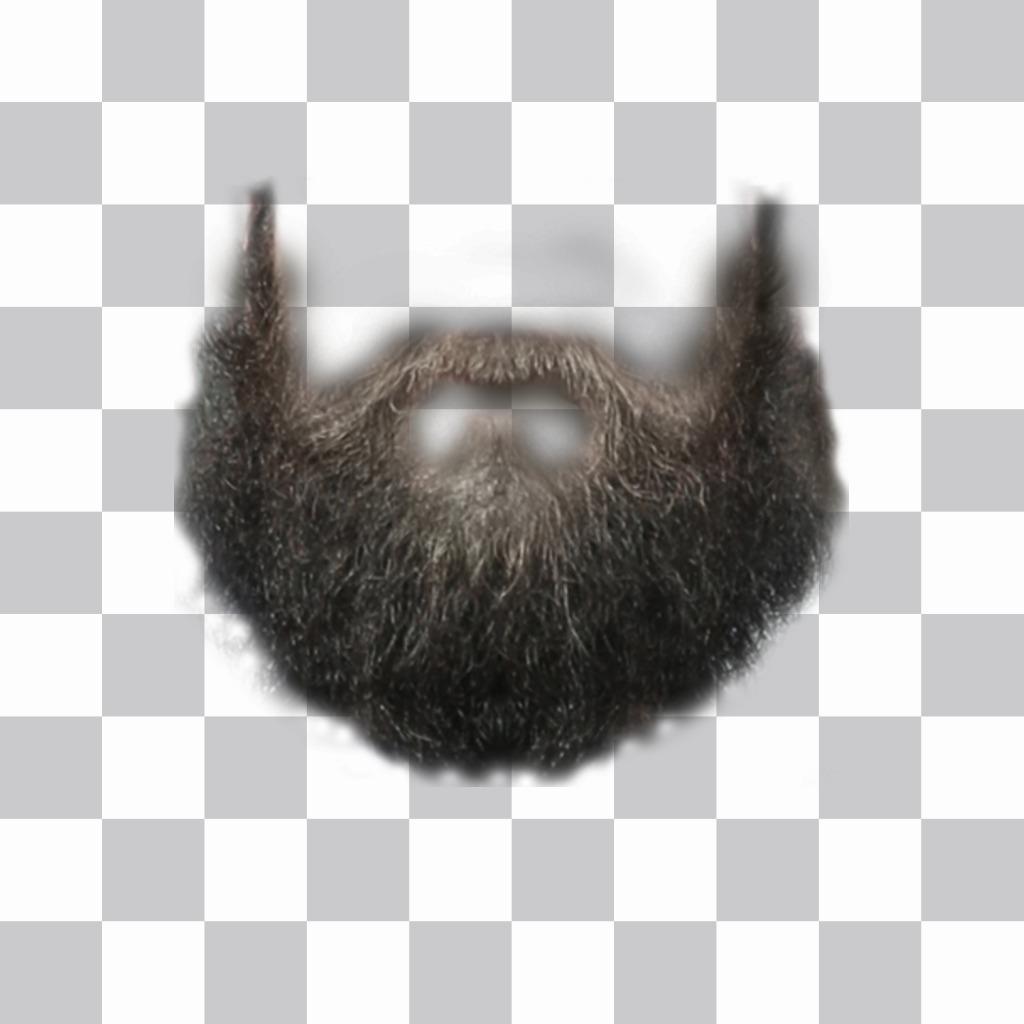 Photomontage pour mettre une barbe sur votre photo