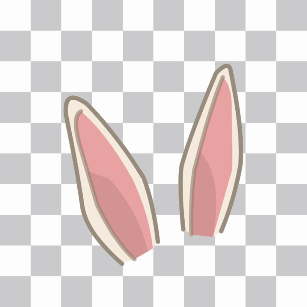 Autocollant pour mettre des oreilles de lapin dans votre photo
