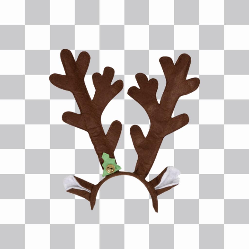 Pare-chocs avec casquette de bois de renne et les oreilles