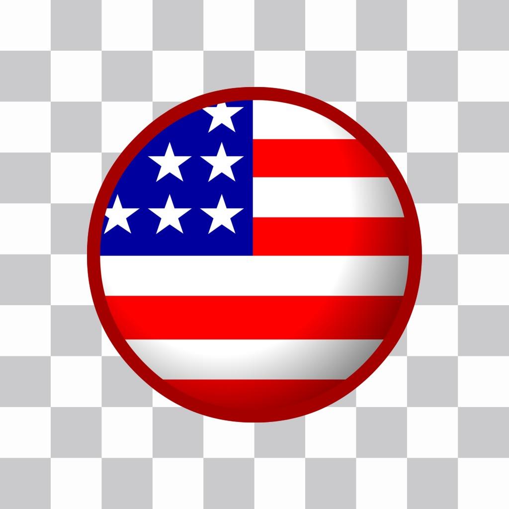 Badge drapeau américain qui peut mettre dans votre profil en ligne de photos