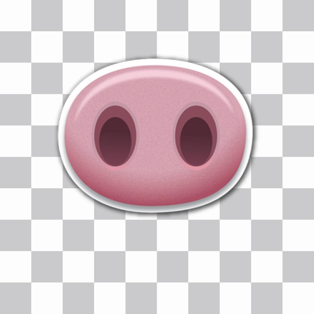 Pig nez pour coller dans vos images à cet effet les télécharger en ligne
